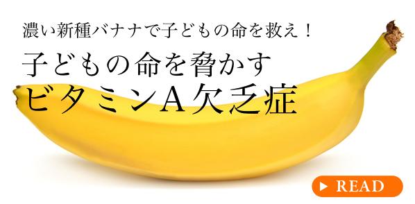 濃い新種バナナで子どもの命を救え!子どもの命を脅かすビタミンA欠乏症